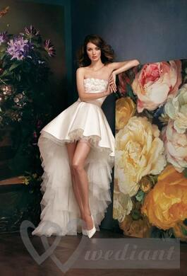 Beautiful wedding dress against a background of spring images