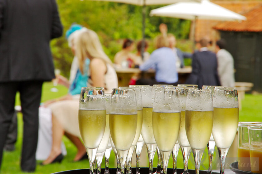 What types of drinks are the most suitable for wedding celebration?