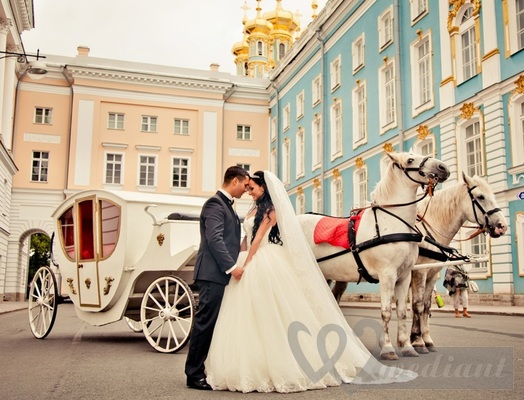 Wedding carriage and horses